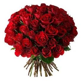 Kastamonu çiçek , çiçekçi , çiçekçilik  33 adet kırmızı gül buketi