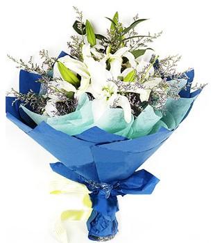 Kastamonu anneler günü çiçek yolla  4 adet dal kazablankadan görsel buket