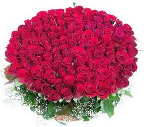 Kastamonu online çiçekçi , çiçek siparişi  100 adet kırmızı gülden görsel buket