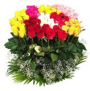 Kastamonu çiçek mağazası , çiçekçi adresleri  51 adet renkli güllerden aranjman tanzimi