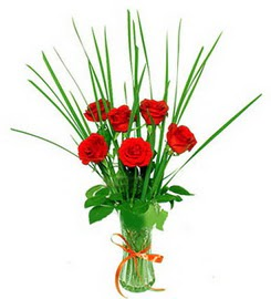Kastamonu çiçek , çiçekçi , çiçekçilik  6 adet kırmızı güllerden vazo çiçeği