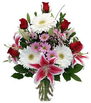 Kastamonu çiçek mağazası , çiçekçi adresleri  1 dal kazablanka 5 gül ve kırçiçeği vazosu
