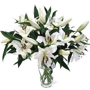 Kastamonu çiçekçi telefonları  3 dal görsel casablanca vazo tanzimi