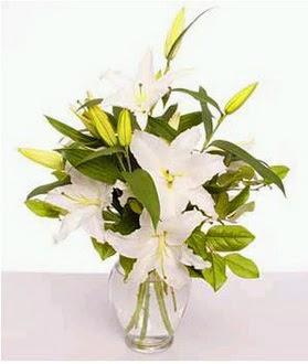 Kastamonu çiçek gönderme  2 dal cazablanca vazo çiçeği