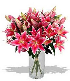4 dal cazablanca görsel vazosu  Kastamonu çiçekçi mağazası