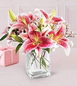 2 dal kazablanka görsel vazosu  Kastamonu çiçek siparişi sitesi