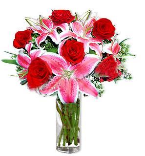 Kastamonu çiçek yolla  1 dal cazablanca ve 6 kırmızı gül çiçeği