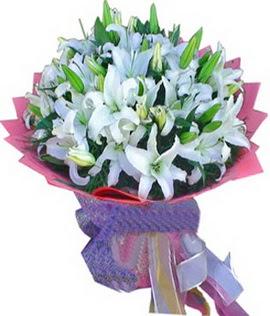 7 dal cazablanca görsel buketi  Kastamonu çiçekçi mağazası