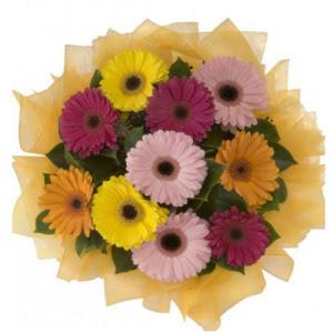 Kastamonu İnternetten çiçek siparişi  11 adet karışık gerbera çiçeği buketi