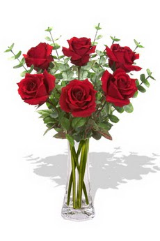Kastamonu çiçekçi mağazası  6 kırmızı gül vazosu