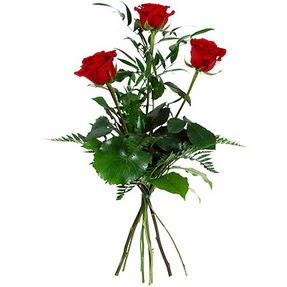 Kastamonu uluslararası çiçek gönderme  3 adet kırmızı gülden buket