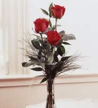 Kastamonu internetten çiçek satışı  Vazoda 3 adet güzel gül
