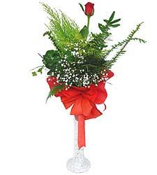Kastamonu anneler günü çiçek yolla  Cam vazoda masum tek gül