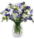 Kastamonu yurtiçi ve yurtdışı çiçek siparişi  Vazoda karisik özel frezyalar