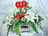 Kastamonu çiçek mağazası , çiçekçi adresleri  Anthurim Kazablanka  gül