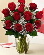 Sevgilime hediye 9 adet 1.ci kalite gül  Kastamonu anneler günü çiçek yolla