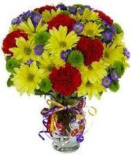 En güzel hediye karışık mevsim çiçeği  Kastamonu hediye çiçek yolla