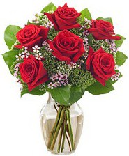 Kız arkadaşıma hediye 6 kırmızı gül  Kastamonu internetten çiçek siparişi