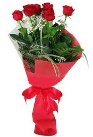 Çiçek yolla sitesinden 7 adet kırmızı gül  Kastamonu internetten çiçek satışı