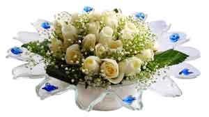 Kastamonu çiçek online çiçek siparişi  11 adet Beyaz güller özel cam tanzim