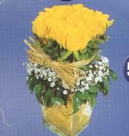 Kastamonu anneler günü çiçek yolla  Cam vazoda 9 Sari gül