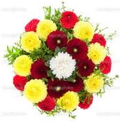 Kastamonu çiçekçi mağazası  13 adet mevsim çiçeğinden görsel buket