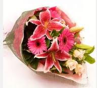 1 dal kazablanka ve mevsim çiçekleri  Kastamonu internetten çiçek siparişi