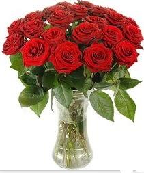 Kastamonu çiçek mağazası , çiçekçi adresleri  Vazoda 15 adet kırmızı gül tanzimi