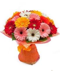 Renkli gerbera buketi  Kastamonu anneler günü çiçek yolla