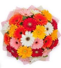15 adet renkli gerbera buketi  Kastamonu yurtiçi ve yurtdışı çiçek siparişi