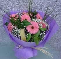 Kastamonu çiçek gönderme sitemiz güvenlidir  9 adet gerbera güzel çiçegi