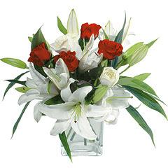 vazo içerisinde 4 gül 1 adet kazablanka  Kastamonu online çiçek gönderme sipariş