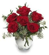 Vazo içerisinde 5 adet kırmızı gül  Kastamonu çiçekçi mağazası
