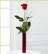 Vazo içerisinde 1 adet kırmızı gül  Kastamonu internetten çiçek siparişi