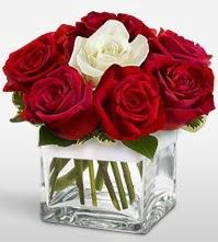 Tek aşkımsın çiçeği 8 kırmızı 1 beyaz gül  Kastamonu uluslararası çiçek gönderme