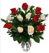Vazo içerisinde 6 kırmızı 6 beyaz gül  Kastamonu hediye çiçek yolla