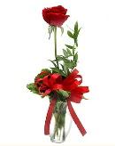 vazo içerisinde 1 adet kırmızı gül  Kastamonu çiçekçi telefonları