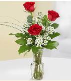 Vazo içerisinde 3 adet kırmızı gül  Kastamonu çiçek satışı