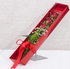 Kutu içerisinde 3 adet kırmızı gül  Kastamonu online çiçek gönderme sipariş