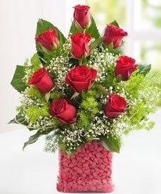 Cam içerisinde 9 adet kırmızı gül  Kastamonu internetten çiçek satışı