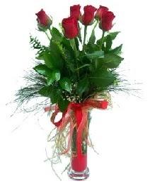 vazo içerisinde 5 kırmızı gül  Kastamonu güvenli kaliteli hızlı çiçek