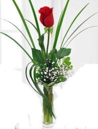 Cam içerisinde 1 kırmızı gül  Kastamonu çiçek gönderme sitemiz güvenlidir
