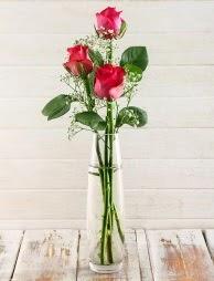 Cam içerisinde 3 kırmızı gül  Kastamonu çiçek satışı