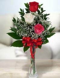 Camda 2 kırmızı 1 beyaz gül  Kastamonu ucuz çiçek gönder