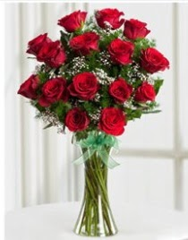 Cam vazo içerisinde 11 kırmızı gül vazosu  Kastamonu anneler günü çiçek yolla