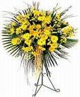 Kastamonu yurtiçi ve yurtdışı çiçek siparişi  Sari kazablanka Ferforje