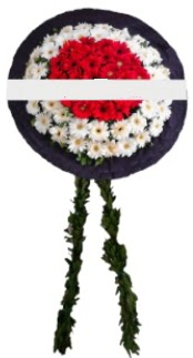 mozele çiçeği  Kastamonu hediye sevgilime hediye çiçek