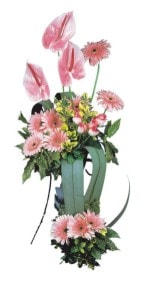 Kastamonu güvenli kaliteli hızlı çiçek  Pembe Antoryum Harikalar Rüyasi