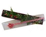 Kastamonu hediye çiçek yolla  3 adet gül.kutu yaldizlidir.