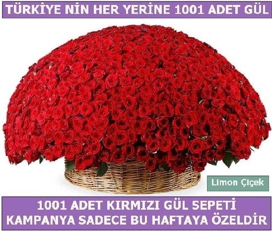 1001 Adet kırmızı gül Bu haftaya özel  Kastamonu İnternetten çiçek siparişi